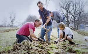 Planting a Peach Tree
